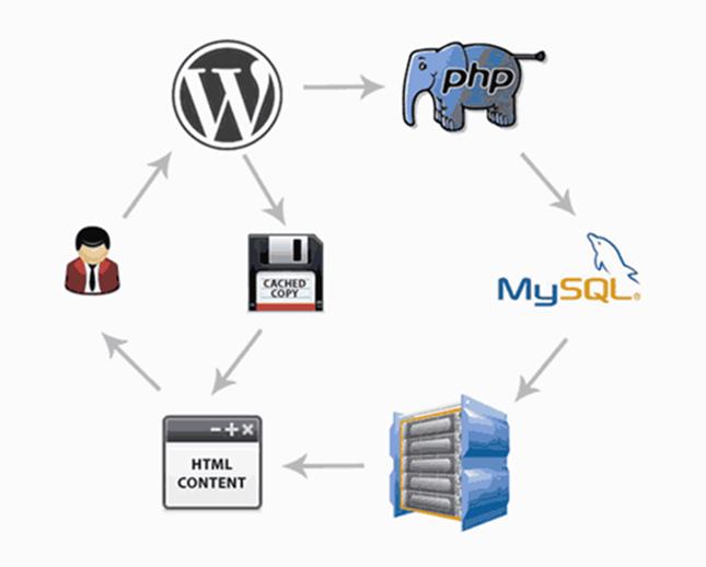 How WordPress Caching Works?